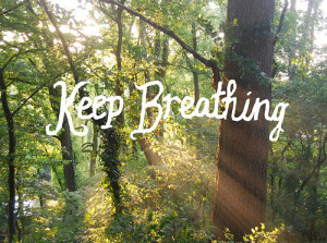 breath-forest-nature-quotes-sunlight-text-Favim.com-41443